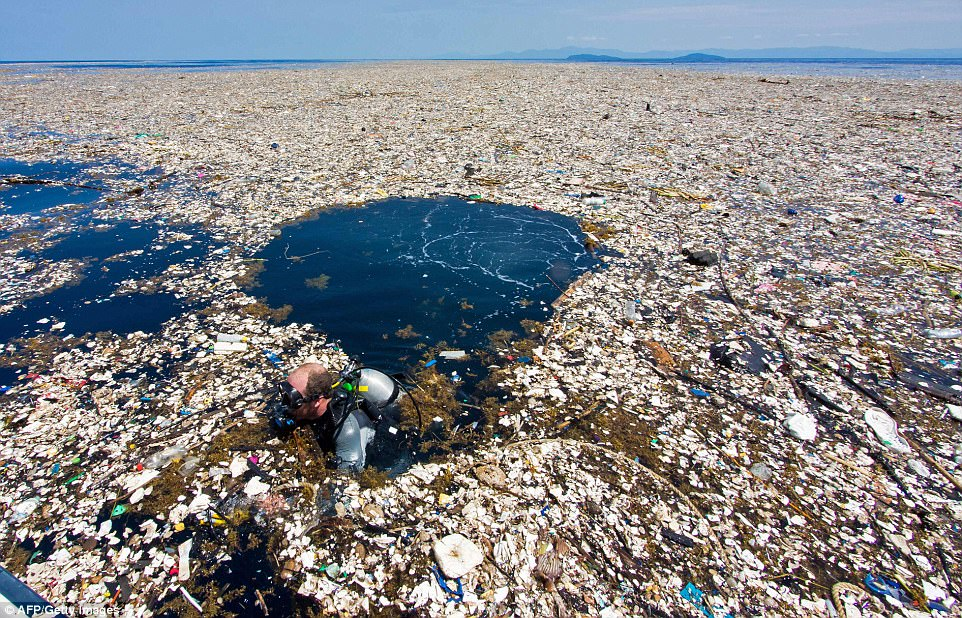 Image result for great pacific garbage patch